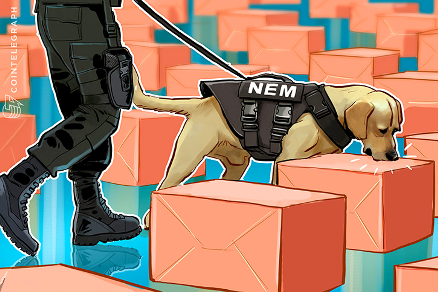 $530 Mln in XEM Stolen From Coincheck Can Be Traced, NEM Team Confirms