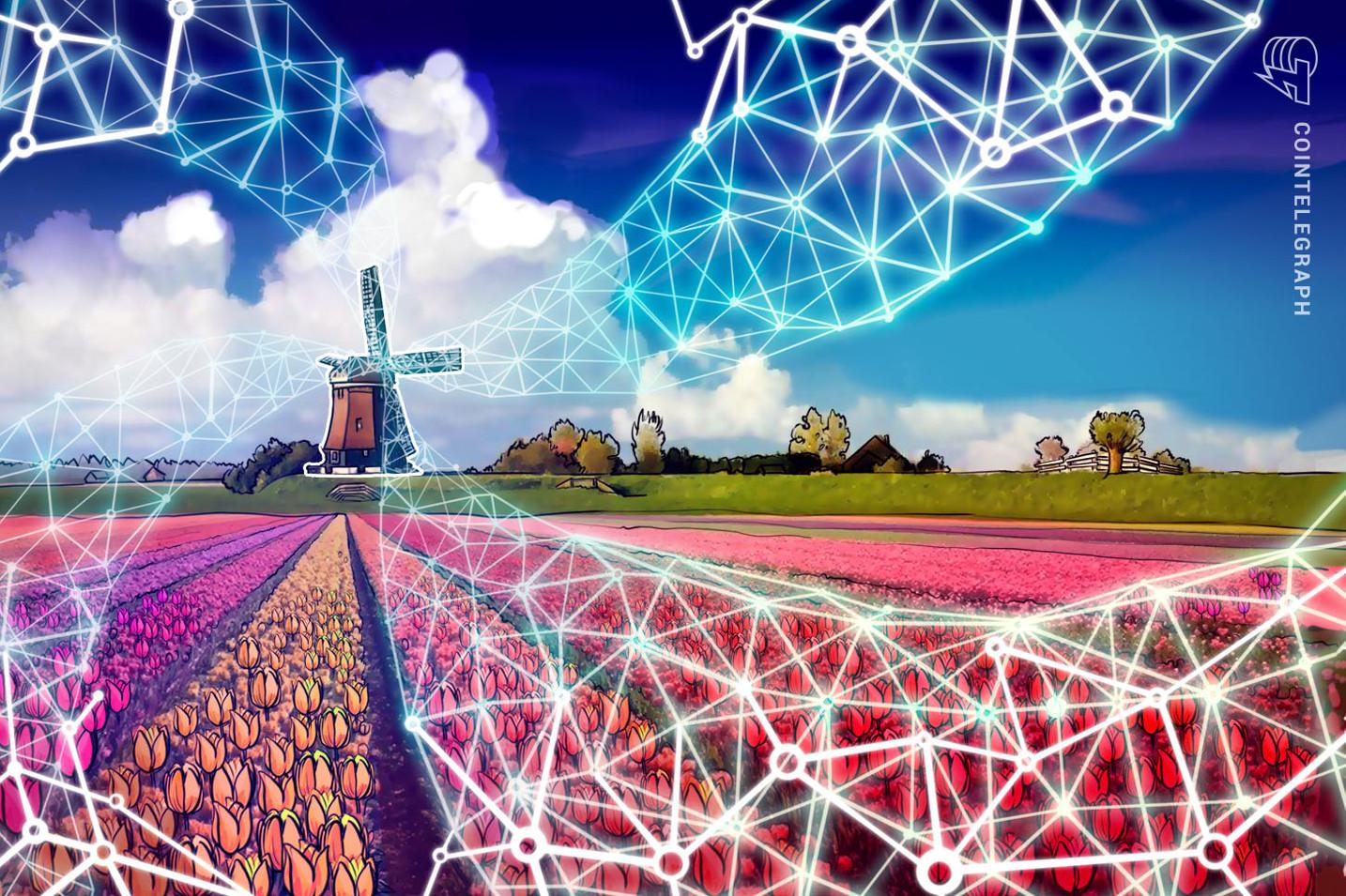 Nuevos Pasos de Adopción: Agenda Nacional Holandesa de Investigación de Cadenas de Bloques
