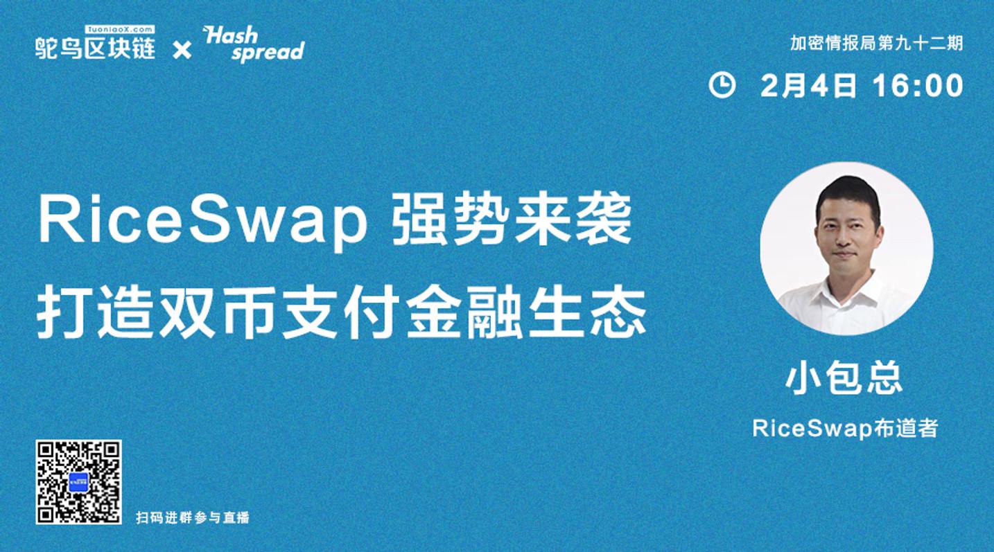 RiceSwap强势来袭,打造双币支付金融生态