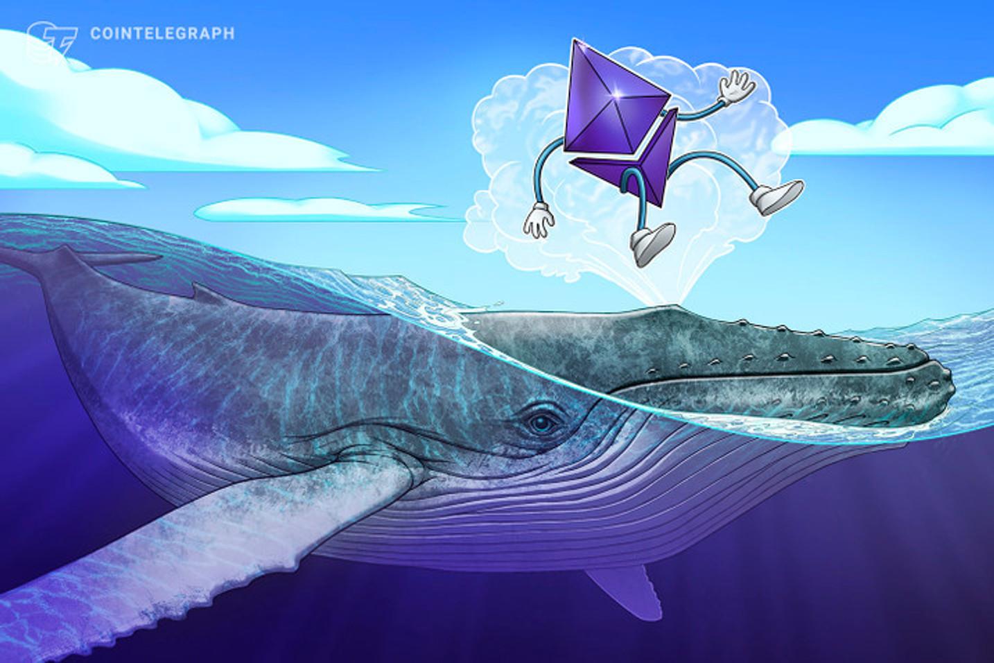 En büyük 10 Ethereum balinası, toplam arzın yüzde 20'sini elinde bulunduruyor!