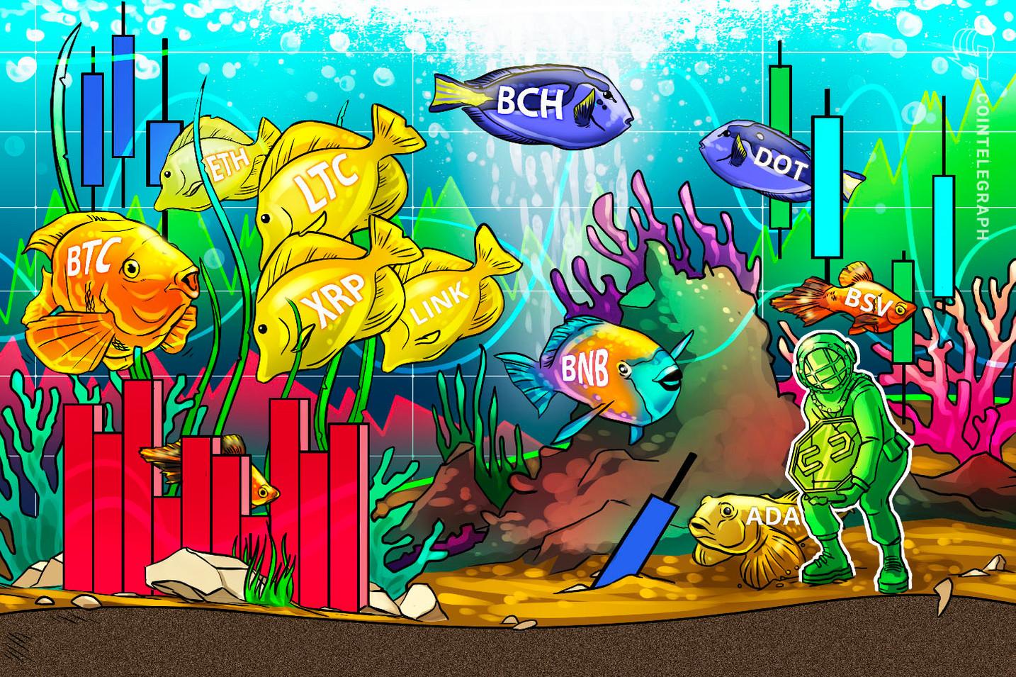 Análisis de precios del 4 de noviembre: BTC, ETH, XRP, BCH, LINK, BNB, LTC, DOT, ADA, BSV
