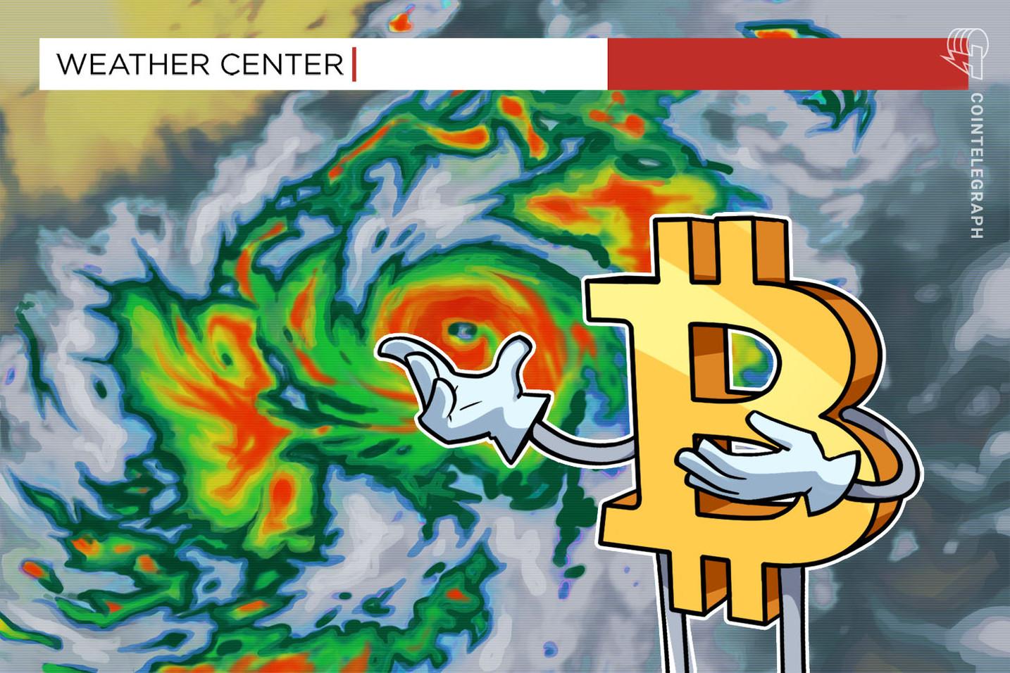 Las acciones caen y el dólar alcanza máximos de 4 meses: por qué el precio de Bitcoin se desplomó por debajo de USD 50,000