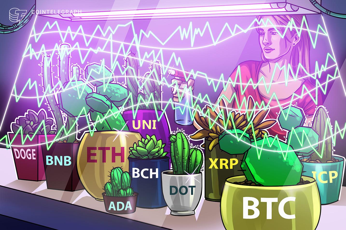 反発に向けて力蓄える 仮想通貨チャート分析:ビットコイン・イーサ・XRP(リップル)・ビットコインキャッシュ