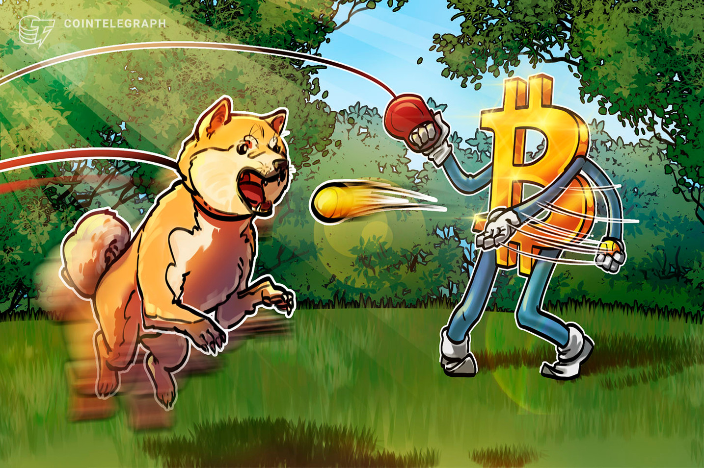 Dogecoin loses 70% against Bitcoin during 6 months of personage  DOGE endorsements