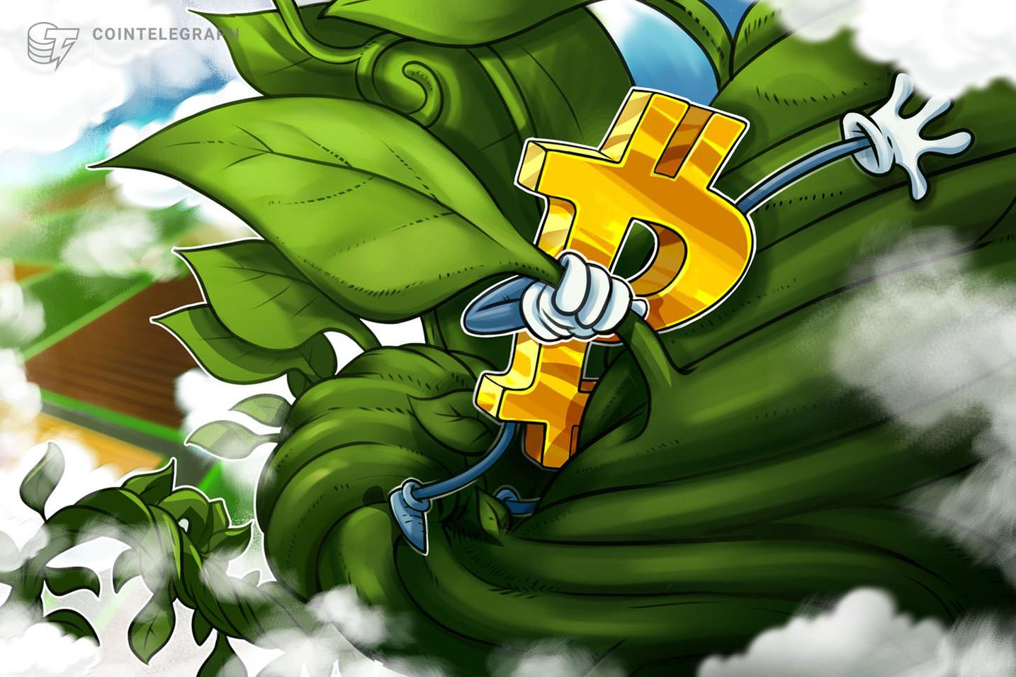 Enquanto Bitcoin está pronto para testar US$ 10 mil outra vez, Algorand e Tezos continuam em alta