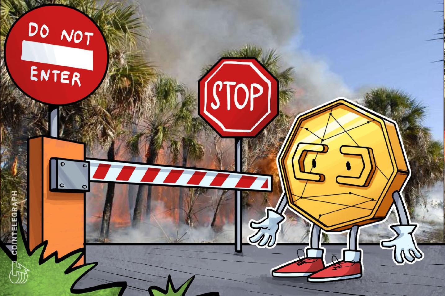 BitPay bloquea una donación de USD 100,000 en Bitcoin para una organización benéfica de la selva amazónica