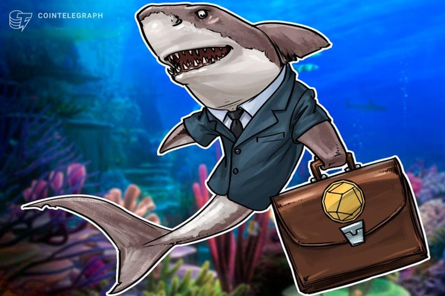 Argentina: El proyecto Sharp Shark para protección de contenidos ganó la competencia de startups en La Conexión Conference