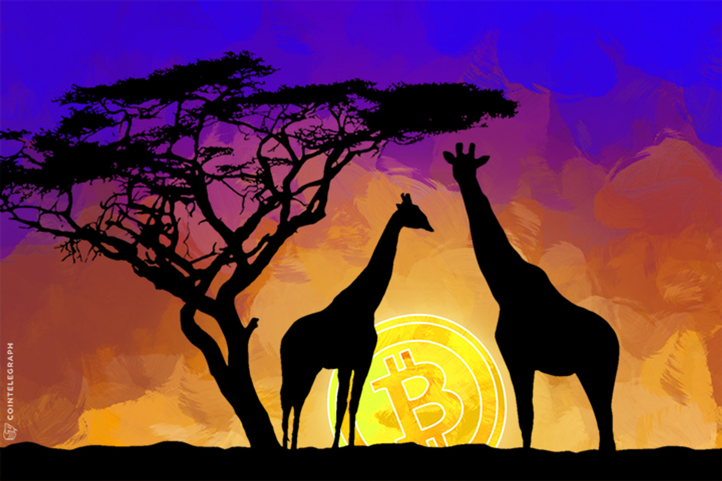 Online Bitcoin Trading Takes Root in Africa