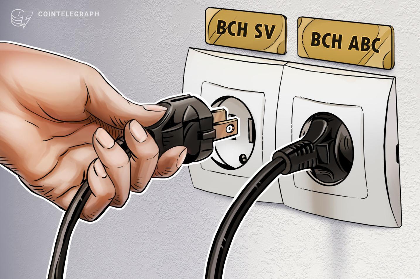 Il portafoglio hardware Ledger ripristina i servizi per Bitcoin Cash