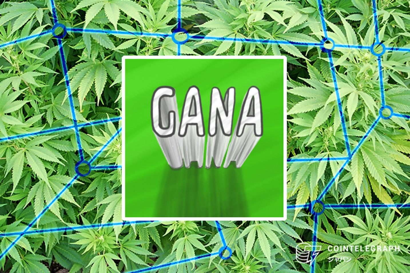 GANAテクノロジー、医療大麻事業でブロックチェーンとAIを採用