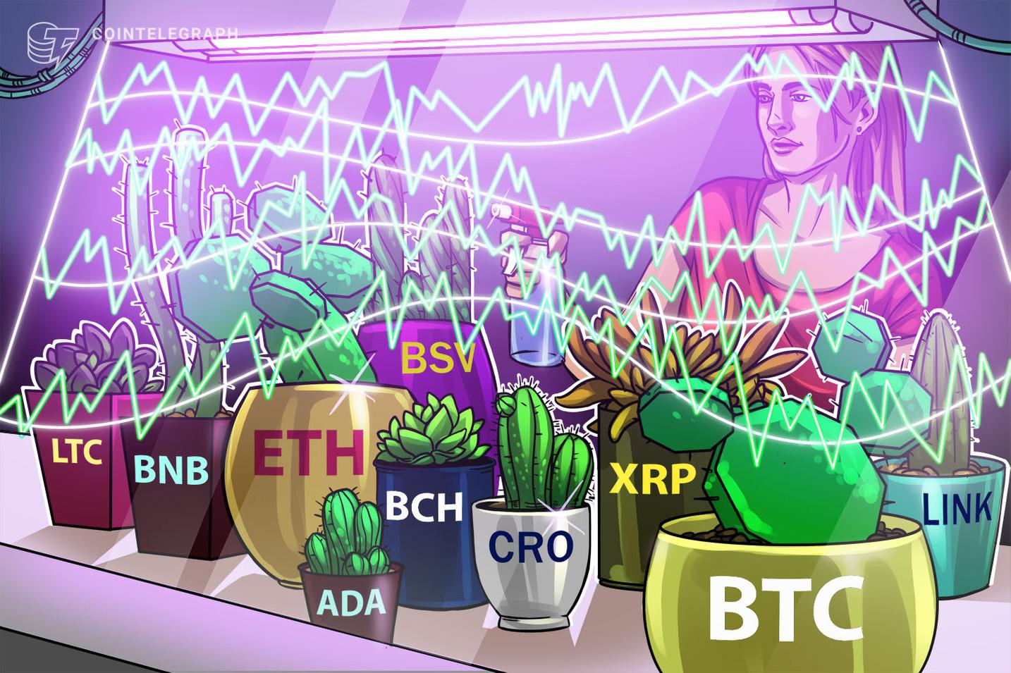 Price analysis 9/2: BTC, ETH, XRP, LINK, BCH, LTC, BNB, CRO, BSV, ADA