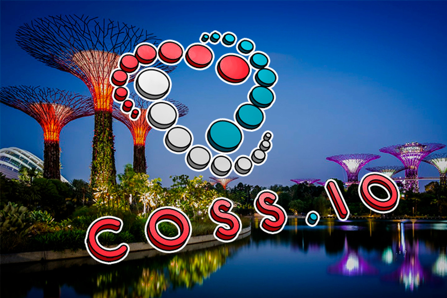 COSS For A Good Cause: Charity For Crypto