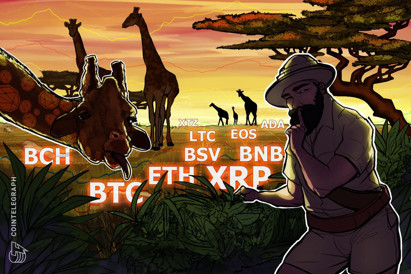 Kursanalyse, 3. Februar: BTC, ETH, XRP, BCH, BSV, LTC, EOS, BNB, ADA, XTZ