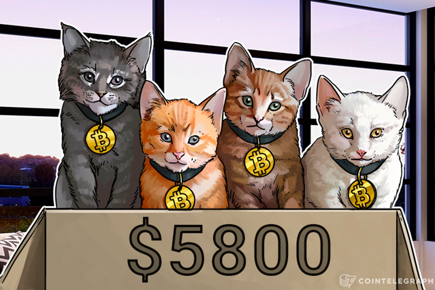 $6k Bitcoin Price Almost Comes True as Forks Flounder, Investors Hold