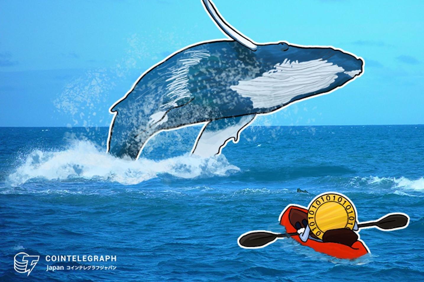 【速報】クジラ出現か?? 仮想通貨ビットコインの22件の連続送金 一回あたり5万5000BTC