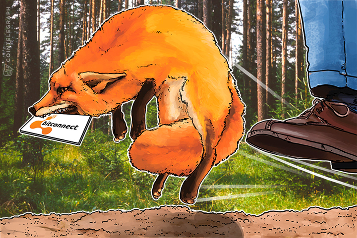 """Esquema """"ponzi"""" da Bitconnect  - Sem simpatia alguma da comunidade cripto"""