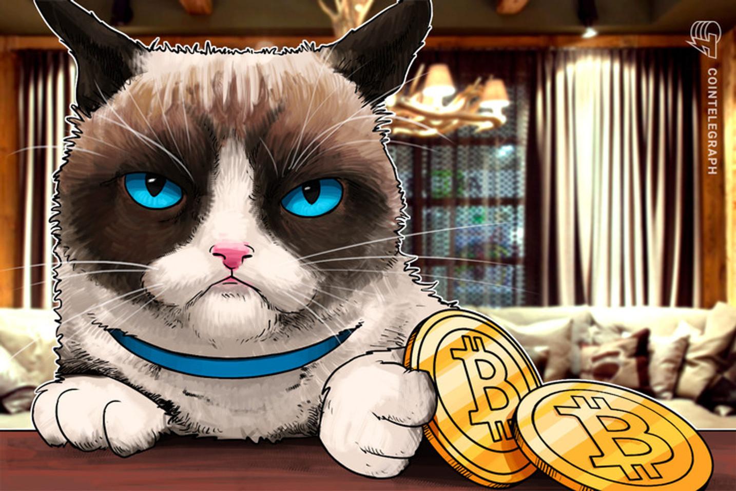 El 'Hodl' de Bitcoin es el más alto entre los usuarios de criptomonedas
