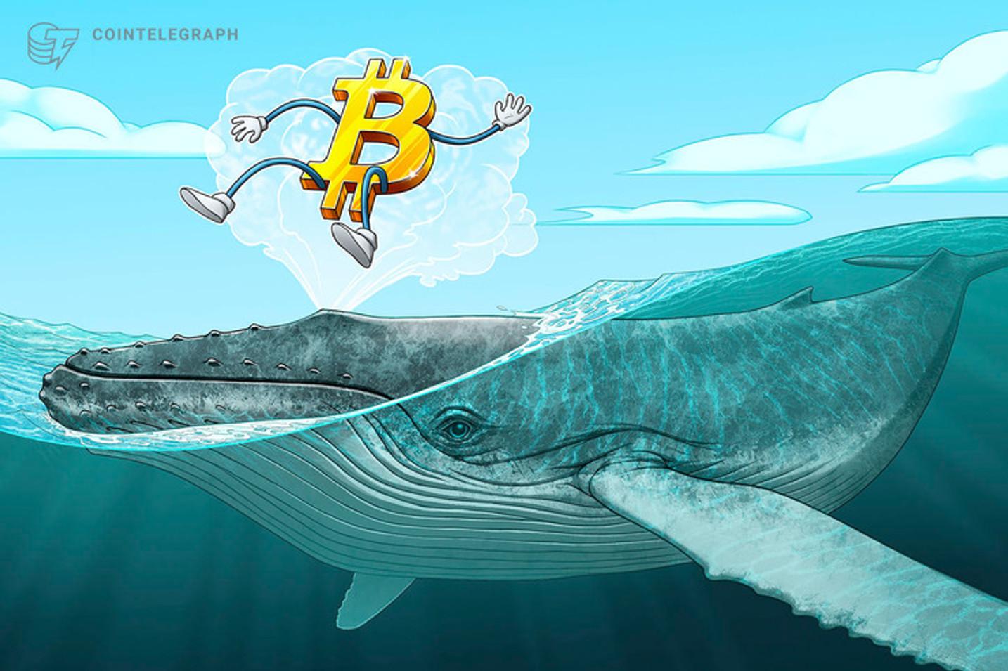 Más de USD 1,800 millones en Bitcoin movilizados durante los dos últimos días por ballenas