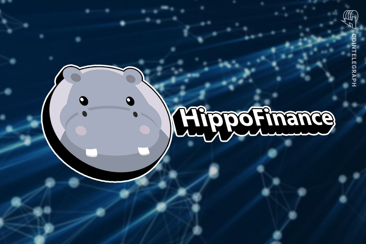 Hippo Finance launches first community governed DeFi hedge fund