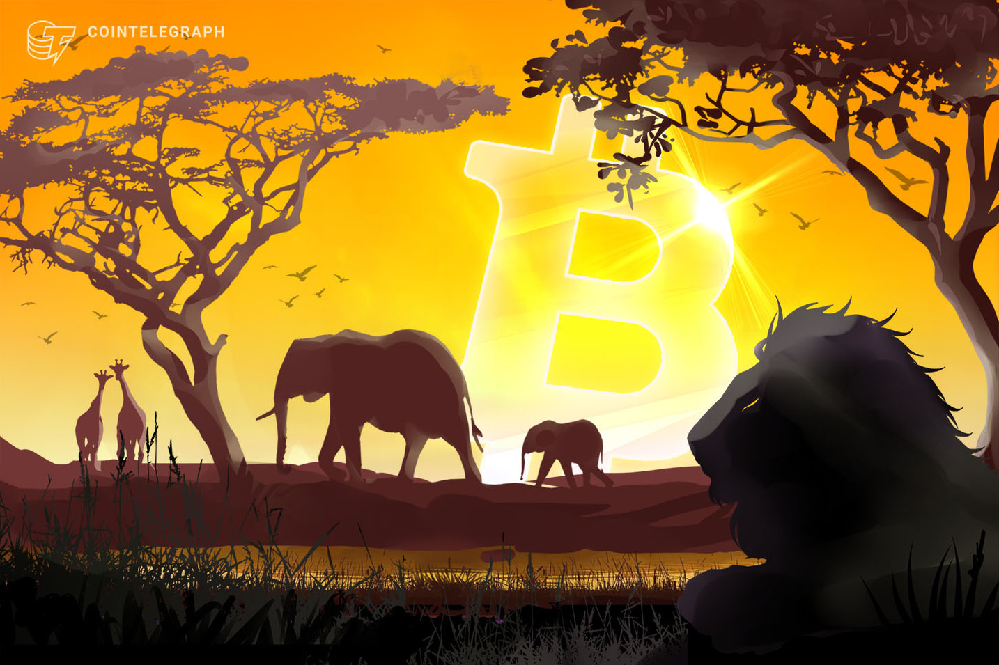 Bitcoin, record di volumi in Africa: superate le cifre di fine 2017