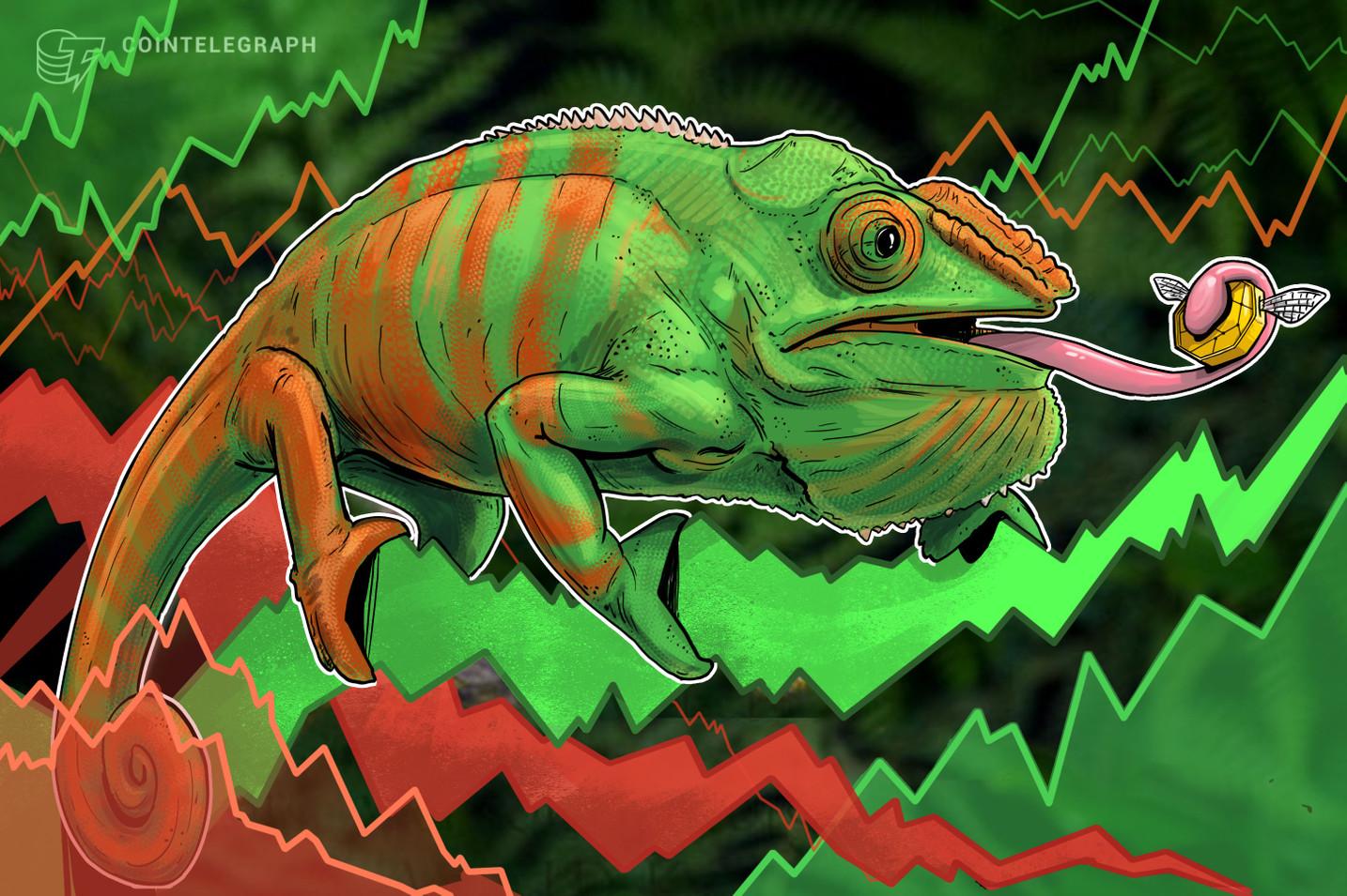 Casi todas las 100 criptomonedas principales están sólidamente en verde, Dogecoin se dispara más del 40%