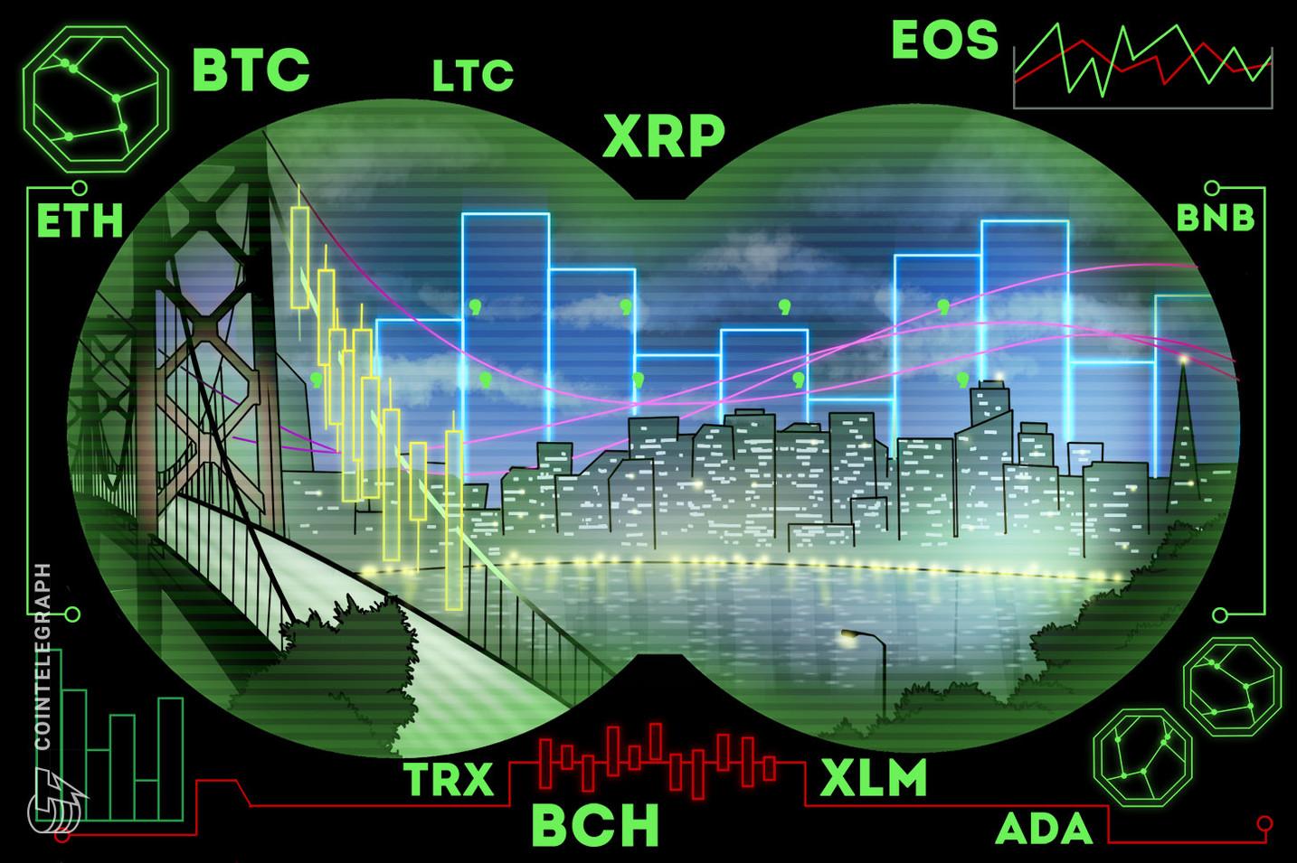 Kursanalyse, 20. Februar: Bitcoin, Ethereum, Ripple, EOS, Litecoin, Bitcoin Cash, Stellar, Tron, Binance Coin, Cardano