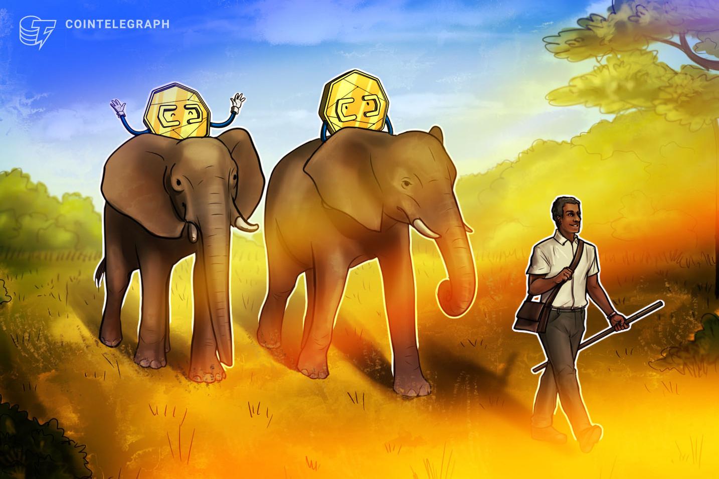 Zimbabwe U-Turns on Crypto, Looking to Stabilize Local Economy