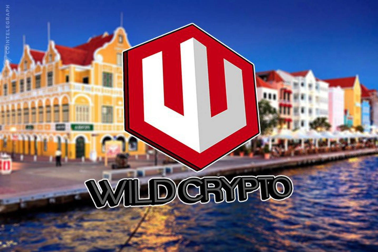 Wild Crypto Launches Following Successful Token Sale
