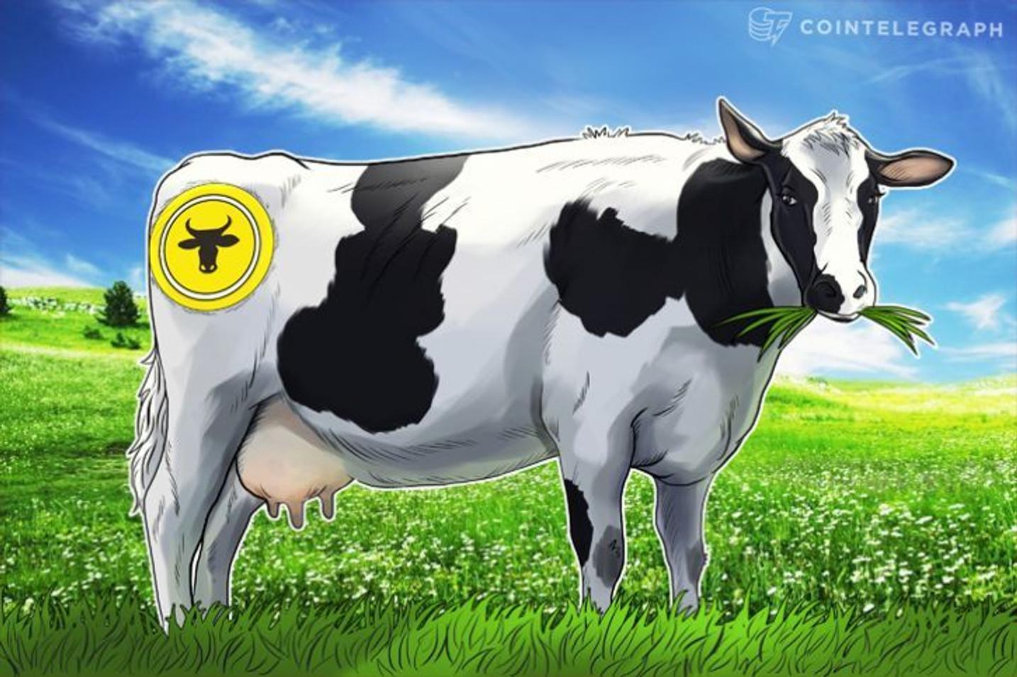 Marfrig adota blockchain em todos os fornecedores para garantir cadeia produtiva do gado livre de desmatamento