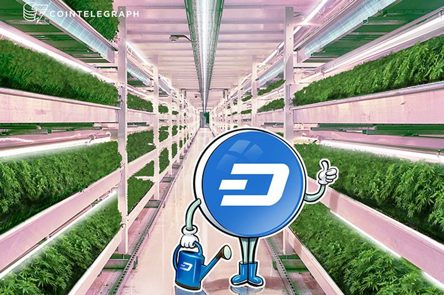 Digital Currency Dash Now Usable at 13,000 Locations In Brazil