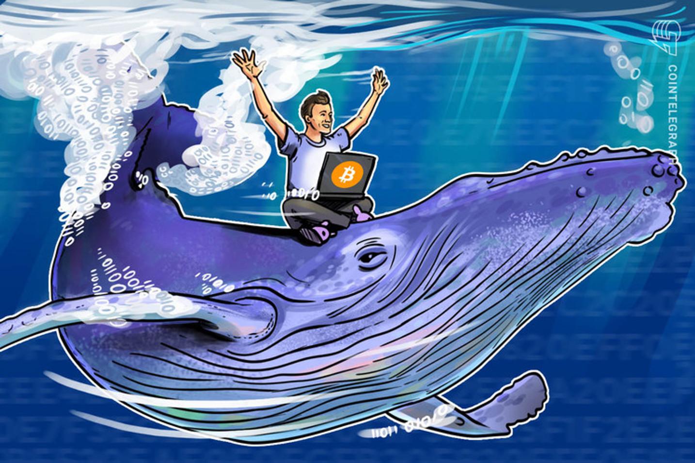 Ballenas mueven Bitcoin y Ethereum a medida que los precios del mercado se recuperan