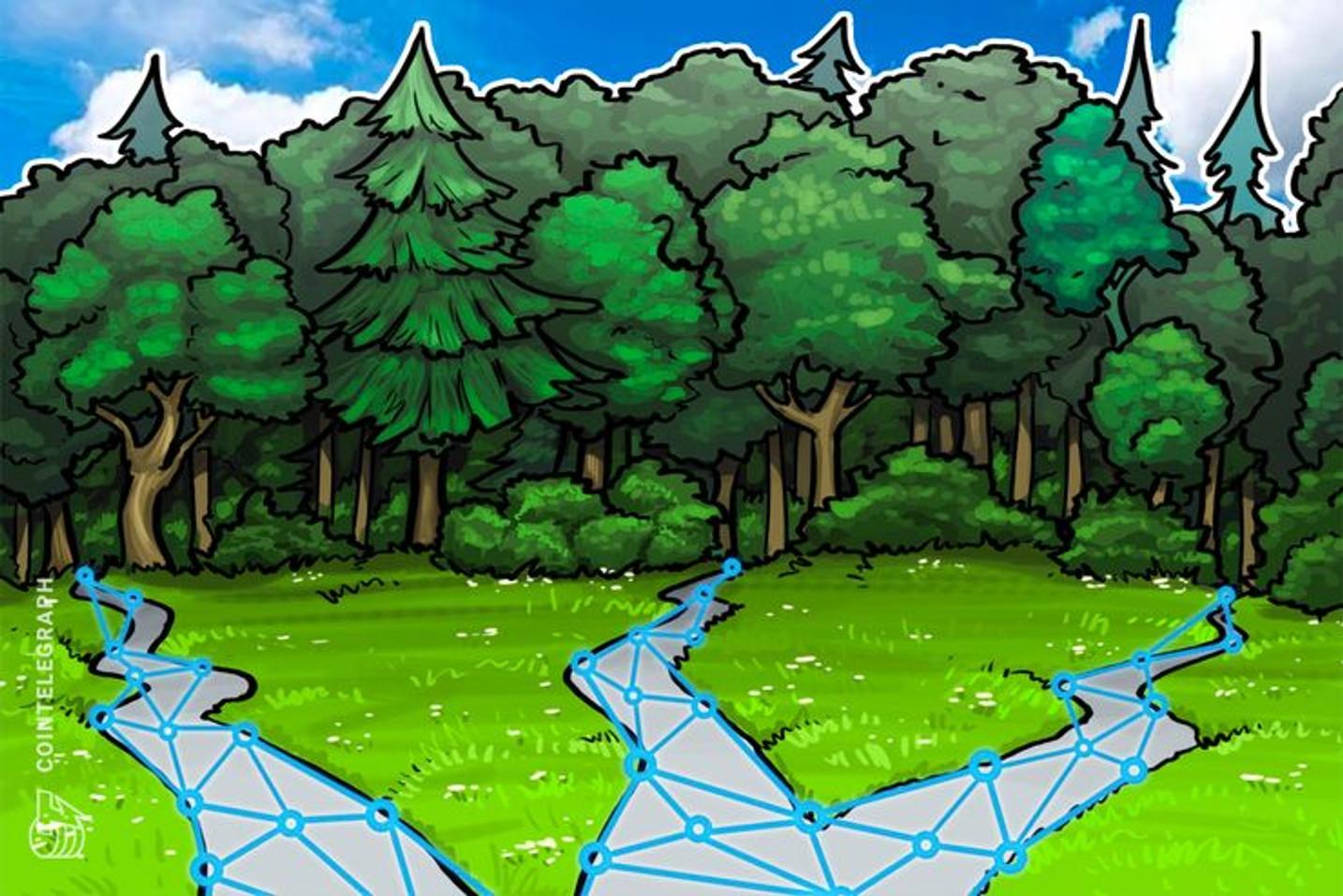 Impulsan software que aplicará tecnología blockchain al sector forestal español
