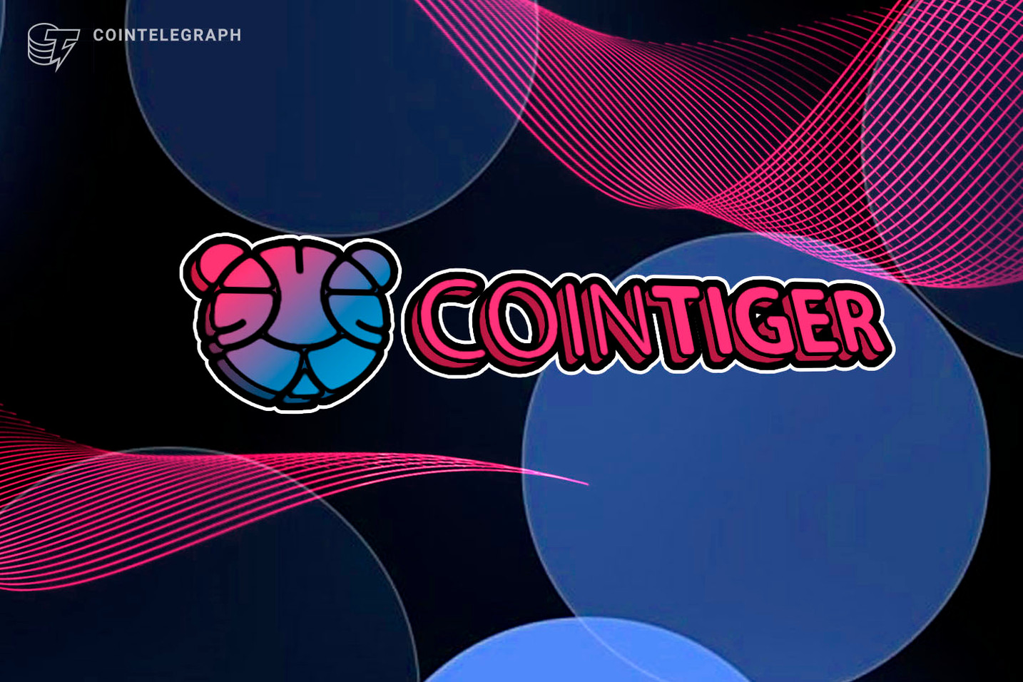 Hold or Save? 20% Extra Coins is Offered to Cryto Believers by CoinTiger!