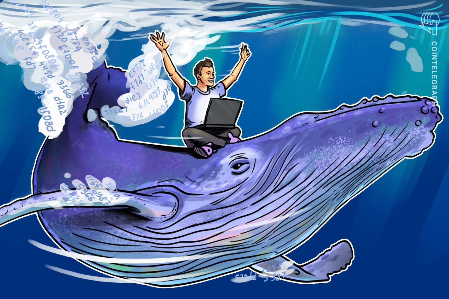 Una ballena estaba detrás del movimiento alcista de Bitcoin en 2017, declaran investigadores