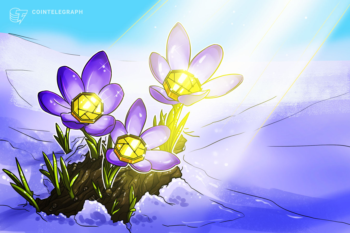 Crypto Winter to Spring: Key Factors That Brought Bitcoin Back to Life