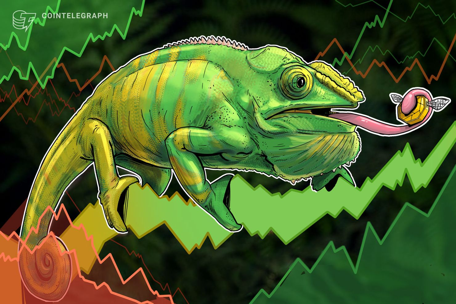 Crypto Markets See Slight Rebound, Bitcoin Trades Above $6,500 Again