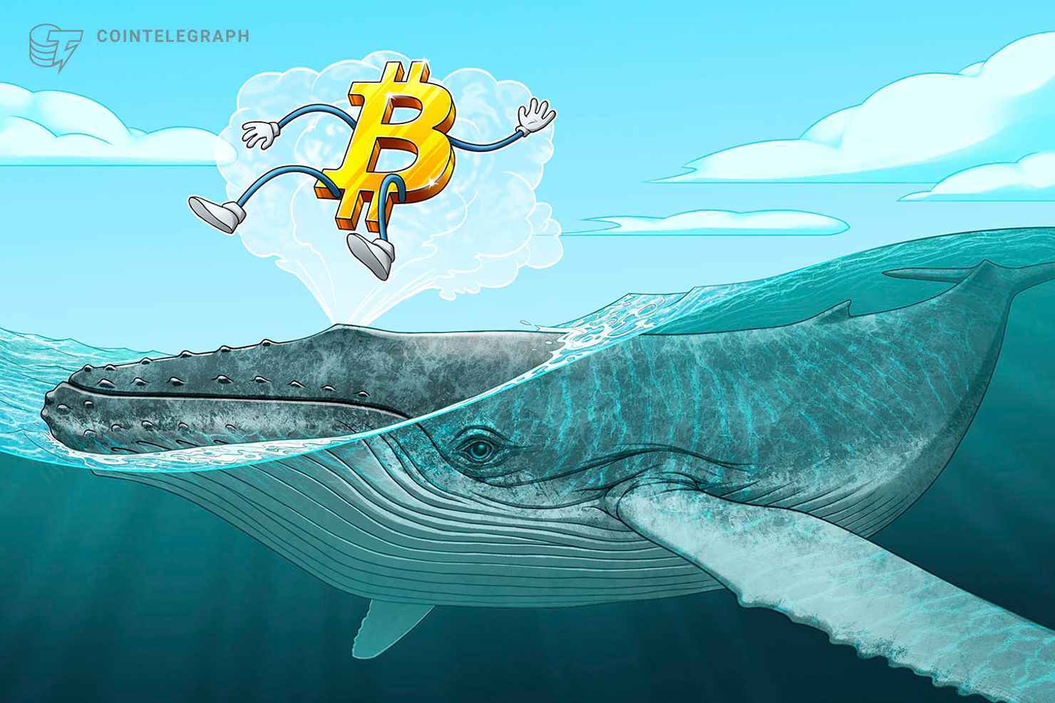 Bitcoin Whale 'Defends' $7.2K Price With 800 BTC to Win $0.01 in DOGE