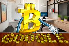 Savetnik holandske centralne banke: Cena bitkoina se menja sa promenom aktivnosti na guglovom pretraživaču