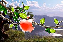 Le criptovalute sono 'interessanti', ha dichiarato un dirigente di Apple Pay
