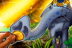 Bithumb Global lancerà in India un exchange di criptovalute regolamentato