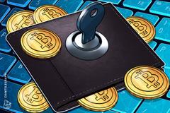 Il più importante exchange dello Zimbabwe perde la password per il proprio cold wallet di Bitcoin