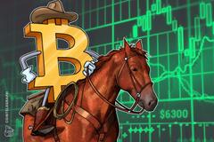 Gli investitori che desiderano controllare il proprio capitale acquistano Bitcoin, afferma il CEO di Circle