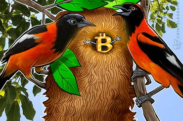 Bitcoin Exchange LocalBitcoins Posts Fourfold Trading Volume Increase in Venezuela