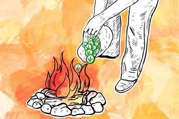 The Full Story Of CannabisCoin's Premine Burn