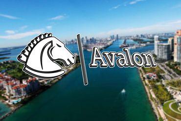 "Startup Avalon ""Draws Sword"" To Slay Consumers' Biggest Dragon - Savings   ICO Goes Viral"