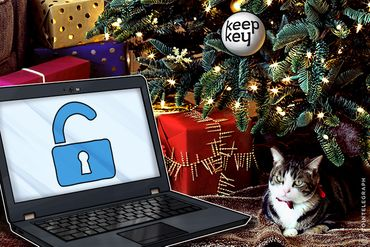 No Scrooge: KeepKey Offers 30 BTC Reward For Capture Of Christmas Day Hacker