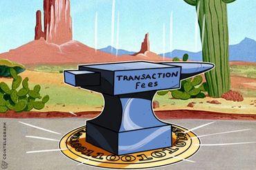 Ari Paul e Tuur Demeester 'Têm Esperanças' de Pagar US$1k de Taxas de Bitcoin