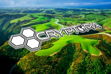 Cryptopia Launches New Zealand Dollar Tethered Cryptocurrency