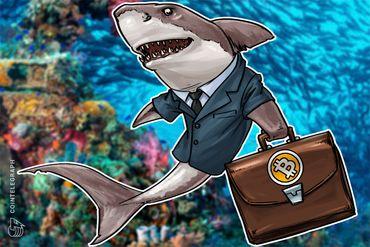 Los datos muestran el cambio de 'Hodlers' a especuladores en Bitcoin en los últimos 6 meses