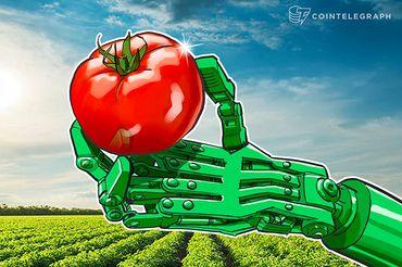 Tomates são o próximo produto a experimentar a revolução Blockchain